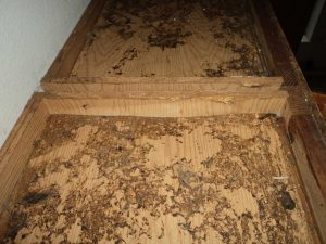 Cocoa Beach Public Adjuster Fire Damage Fire-Damage-Concealed